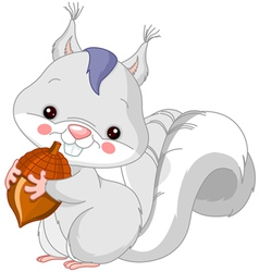 Fun zoo White squirrel vector image