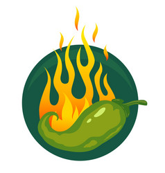Hot jalapeno or chili peppers vector