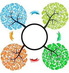 Seasons tree with arrows vector image