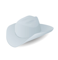 stetson on white vector image