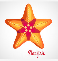 cartoon orange starfish vector image
