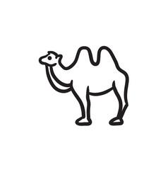 Camel sketch icon vector