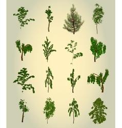 Set Tree Element for design vector image
