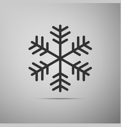 snowflake flat icon on grey background vector image