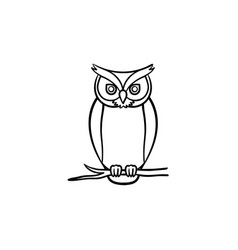 wisdom owl hand drawn sketch icon vector image