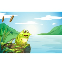 A trunk at the river with a frog vector image
