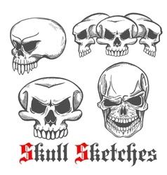 Human skulls and monster cranium sketches vector image
