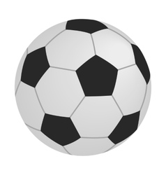 Soccer isometric 3d icon vector image vector image