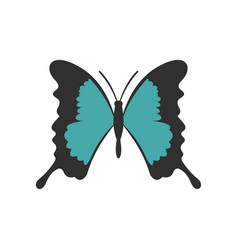 butterfly with long wings icon flat style vector image