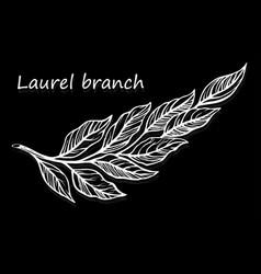 hand-drawn sketch laurels elements wild leaves vector image