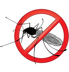 No mosquito gnat insect sign vector