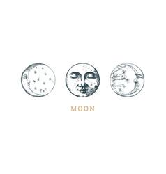Set moon drawings crescent sketches vector