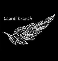the hand-drawn sketch laurels elements wild leaves vector image
