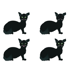 Black Cat with Green Eyes vector image vector image