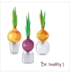 Spring onion set vector image vector image