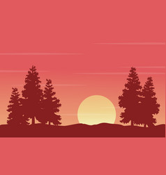 At morning with spruce landscape silhouettes vector
