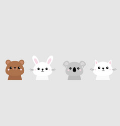 cat kitten bear rabbit hare grizzly koala vector image
