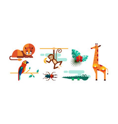collection cute animals lion monkey parrot vector image