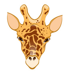 Giraffe in cartoon style vector