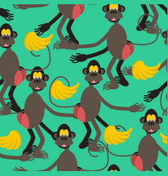 Hamadryad seamless pattern monkey red butt and vector