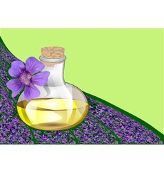 Lavender oil vector