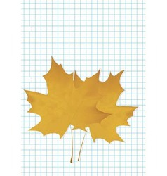 The maple leaf lies on a notebook vector