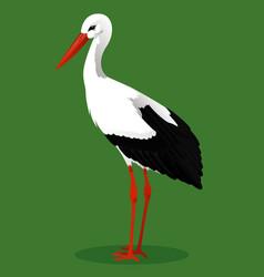 White stork cartoon bird vector