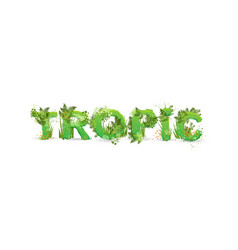 word tropic with capital vector image