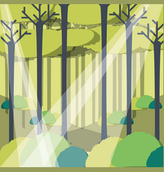 rays of sun light entering in a green forest vector image