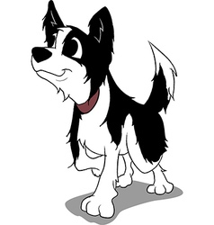 Border collie cartoon vector