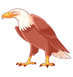 Cartoon smiling eagle vector