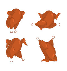 Fried turkey different poses baked chicken fowl vector