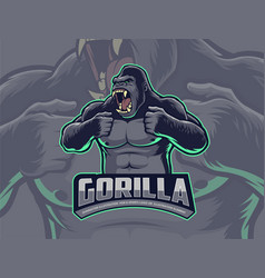 gorilla beating chest vector image