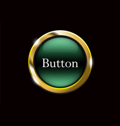 green shiny button with metallic elements vector image
