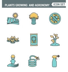 Icons line set premium quality of plants growing vector image