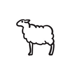 sheep sketch icon vector image