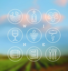 Line drawing set of wine and winemaking icons vector image