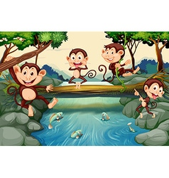 Four monkeys by the river vector image vector image