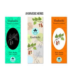 Ayurvedic herbs banners guduchi transport vector