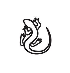 lizard sketch icon vector image