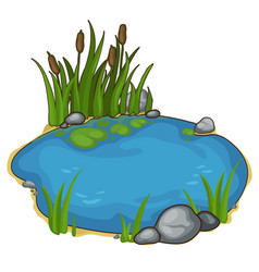 Small lake with reeds in cartoon style vector