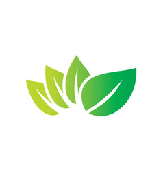 eco leaf organic logo image vector image vector image