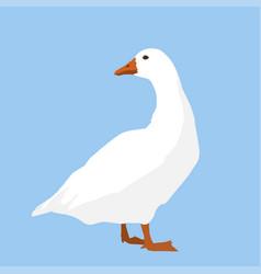 A white goose vector