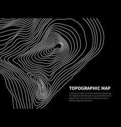 Contour map cartography line relief graphic vector