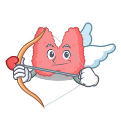 Cupid thyroid character cartoon style vector