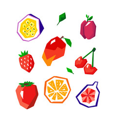 exotic fruit set stylized geometric design vector image