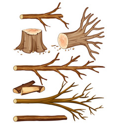 Firewood and stump trees vector