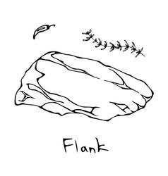 Flank steak cut isolated on white vector