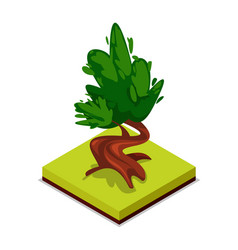 Green chestnut tree isometric 3d icon vector