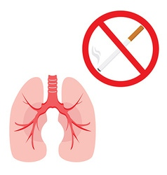 Lungs and cigarette vector